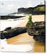Hawaiian Offering On Beach Acrylic Print