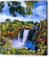 Hawaiian Paradise Falls Acrylic Print by David Lloyd Glover