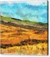 Hawaiian Pasture Acrylic Print