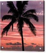 Hawaiian Sunset With Coconut Palm Tree Acrylic Print