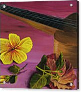 Hawaiian Ukulele Acrylic Print