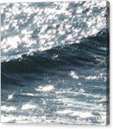 Hawaiian Wave Acrylic Print