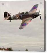 Hawker Hurricane -2 Acrylic Print