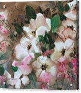 Hawthorne Beauties Acrylic Print