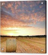 Hay Bale Field At Sunrise Acrylic Print by Stu Meech
