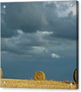 Hay Bales In Harvested Corn Field Acrylic Print