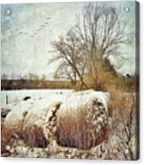Hay Bales In Snow Acrylic Print