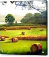 Hay Bales Acrylic Print