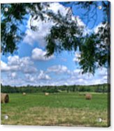 Hay Field In Summertime Acrylic Print