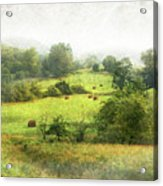 Hay Fields Acrylic Print