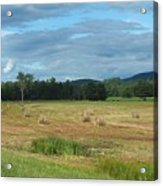Hay Fields In The Adirondacks Acrylic Print