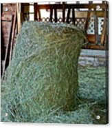 Hay Is For Horses Acrylic Print