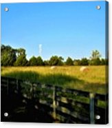 Hayfield With Distant Cell Tower Acrylic Print