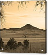 Haystack Mountain - Boulder County Colorado - Sepia Evening Acrylic Print