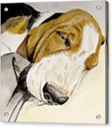 Hazel First Portrait Acrylic Print
