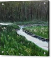 Head For The Forest Acrylic Print