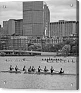 Head Of The Charles. Charles Rowers Black And White Acrylic Print
