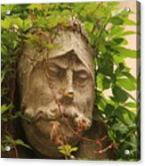 Head With Vines Acrylic Print