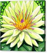 Heart Chakra Acrylic Print