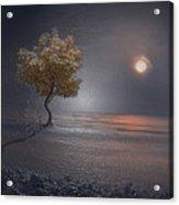 Heart In Far Light Acrylic Print