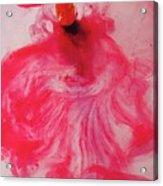 Heart  Meringue Acrylic Print