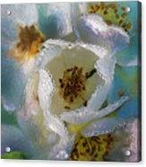 Heart Of A Dewy Flower Acrylic Print