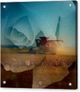 Heart Of The Delta Acrylic Print