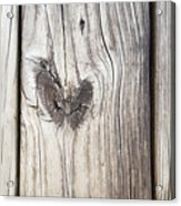 Heart Of Wood Acrylic Print