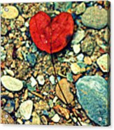 Heart On The Rocks Acrylic Print by Susie Weaver