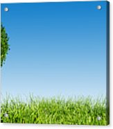 Heart Shape Tree On Green Grass Field Acrylic Print