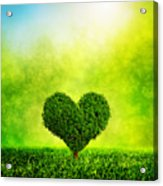 Heart Shaped Tree Growing On Green Grass Acrylic Print