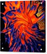 Heart Warmth Acrylic Print