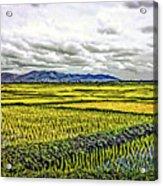 Heartland Oil Acrylic Print