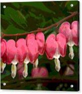 Hearts A' Flutter Acrylic Print