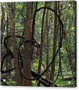 Hearts In The Woods Acrylic Print