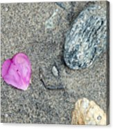Hearts In Westport Acrylic Print
