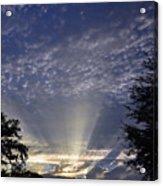 Heaven On Earth Acrylic Print