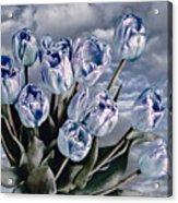 Heavenly Blue Acrylic Print