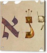 Hebrew Calligraphy- Yanay Acrylic Print