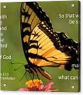 Hebrews Scripture Butterfly Acrylic Print