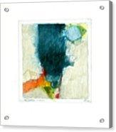 Hedgefishog  --start-- Acrylic Print