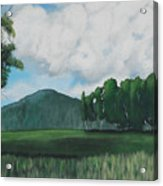 Hedgerow Acrylic Print