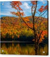 Heights Of Autumn Acrylic Print