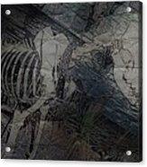 Hellhound  Acrylic Print