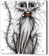 Hello Fuzzy Cat Acrylic Print