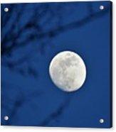 Hello Moon Acrylic Print