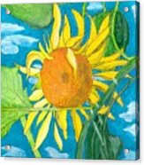 Hello Sunshine Acrylic Print