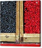 Helsinkian Berries Acrylic Print