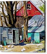 Hen House Acrylic Print