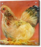 Henney Acrylic Print